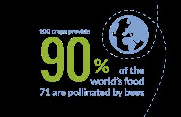 Pollinator Plan Infographics_global food