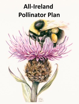 Pollinator Plan colour logo
