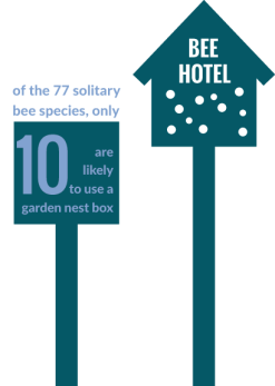 Pollinator Plan Infographics_Bee Hotels